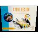 Cygne Multicolore Matelas géant gonflable